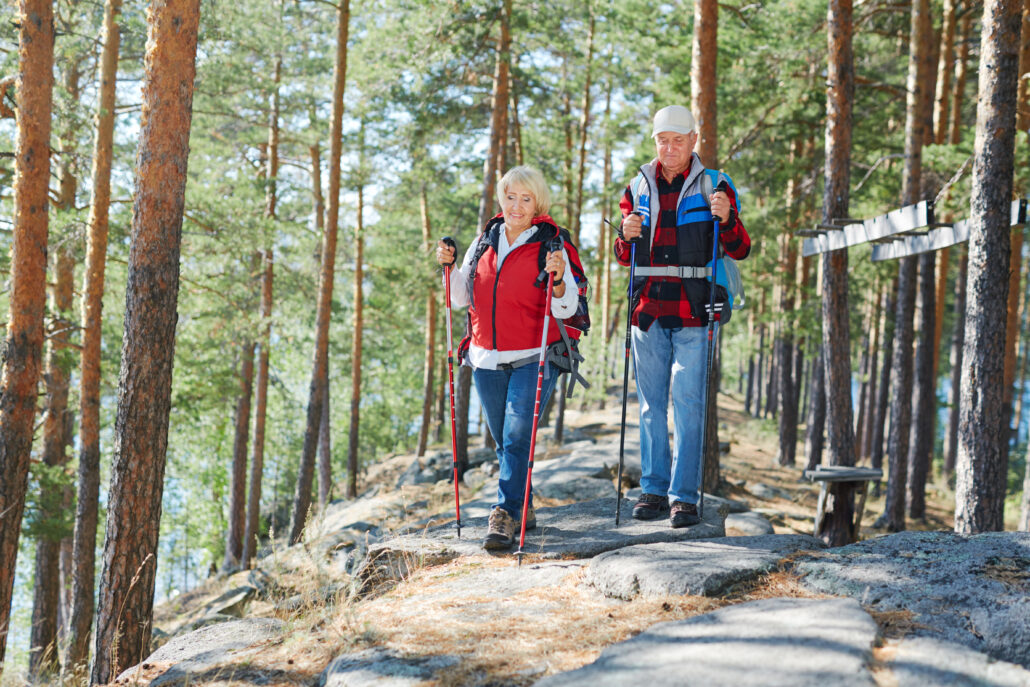 Senior tourists go trekking in the forest